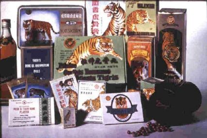 illegal tiger bone products
